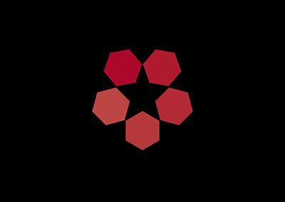 Création d'un pictogramme accompagnant le logo Starmetal